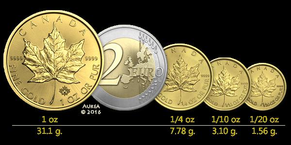 auksinies-monetos-dydziai